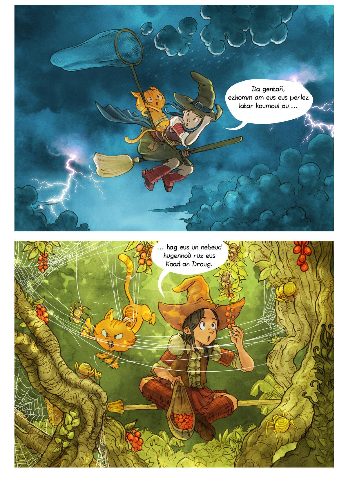 A webcomic page of Pepper&Carrot, rann 3 [br], pajenn 5