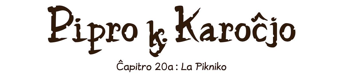 Ĉapitro 20a : La Pikniko
