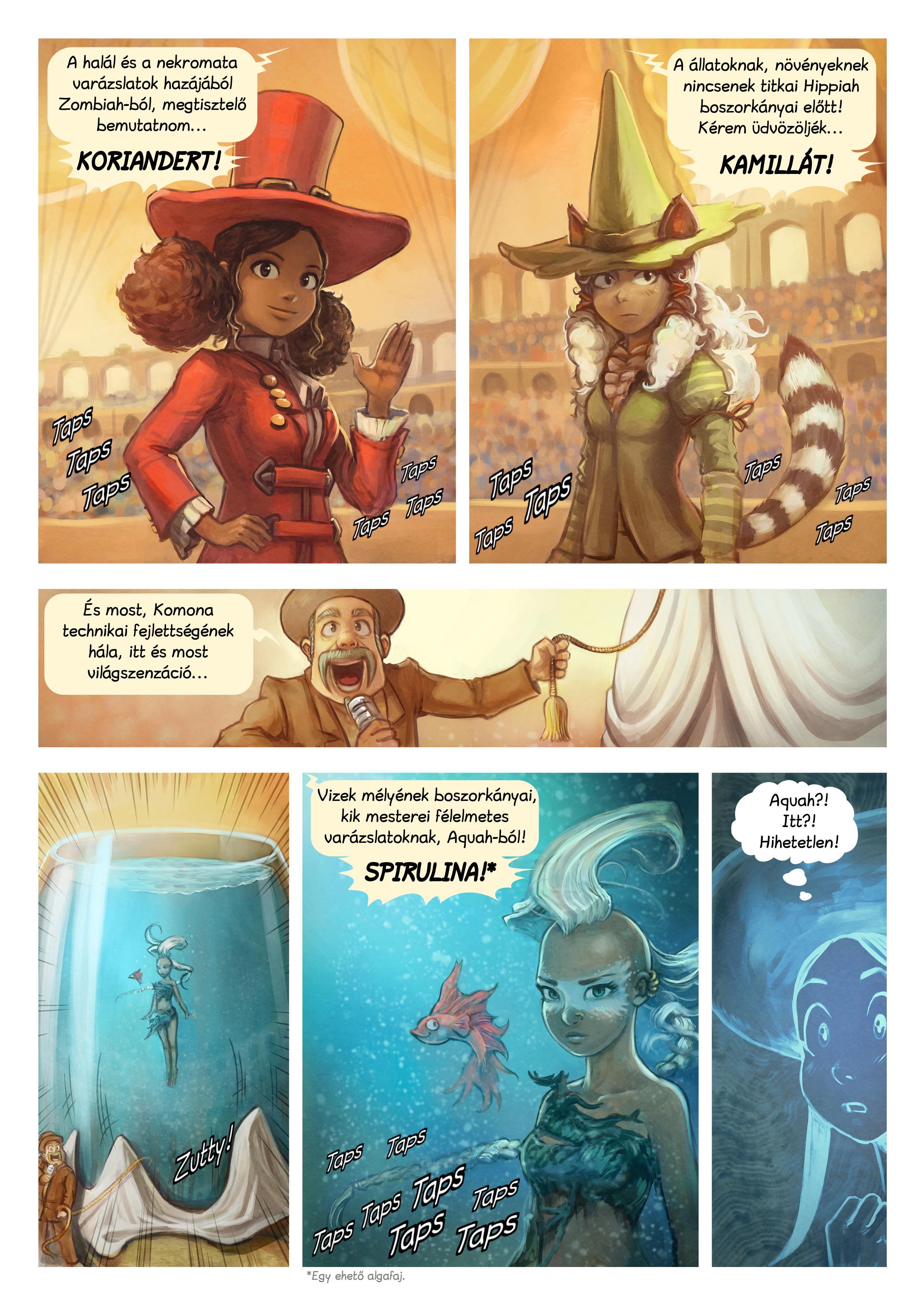 A webcomic page of Pepper&Carrot, epizód 21 [hu], oldal 4